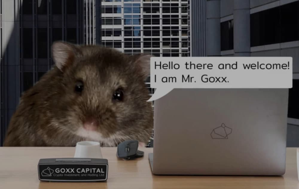 gox hamster
